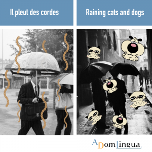 proverbes anglais Il pleut des cordes
