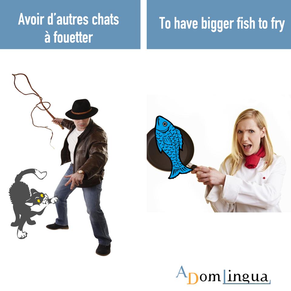 Les Proverbes Anglais Avoir D Autres Chats A Fouetter