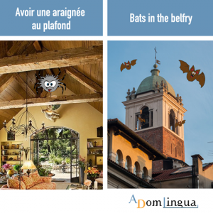 Les proverbes anglais et leurs équivalents en français Avoir une araignée au plafond