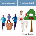 Les proverbes anglais et leurs équivalents en français «Tourner autour du pot»